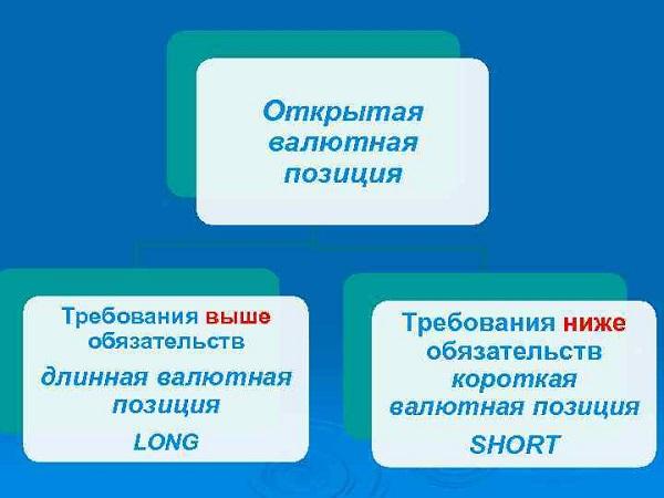 Виды открытых валютных позиций