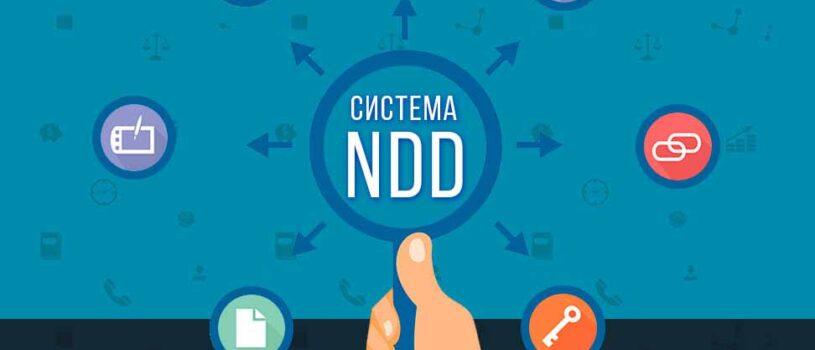 Что такое NDD — плюсы и минусы, как открыть счет NDD