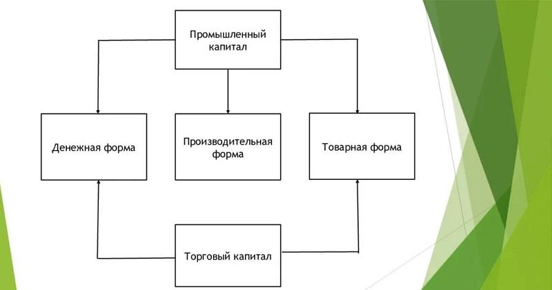 Разновидности капитала